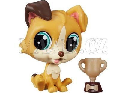 Littlest Pet Shop jednotlivá zvířátka - Tessa Terrier