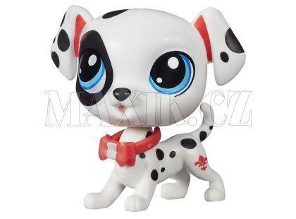Littlest Pet Shop jednotlivá zvířátka B A8229 - Dotsy Davidson