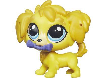 Littlest Pet Shop jednotlivá zvířátka B A8229 - Damon Golden