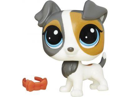 Littlest Pet Shop jednotlivá zvířátka Scamps Russo