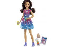 Mattel Barbie Chůva černovláska FXG93