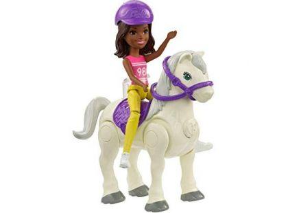 Mattel Barbie Pony a panenka Tmavě bílý FHV61