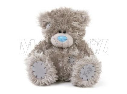 Me to you Medvídek Tatty Teddy 16 cm