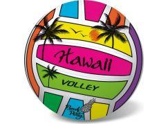 Míč volejbalový Hawai 21cm