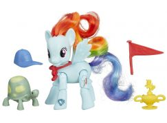 My Little Pony Poník s kamarádem a doplňky - Rainbow Dash