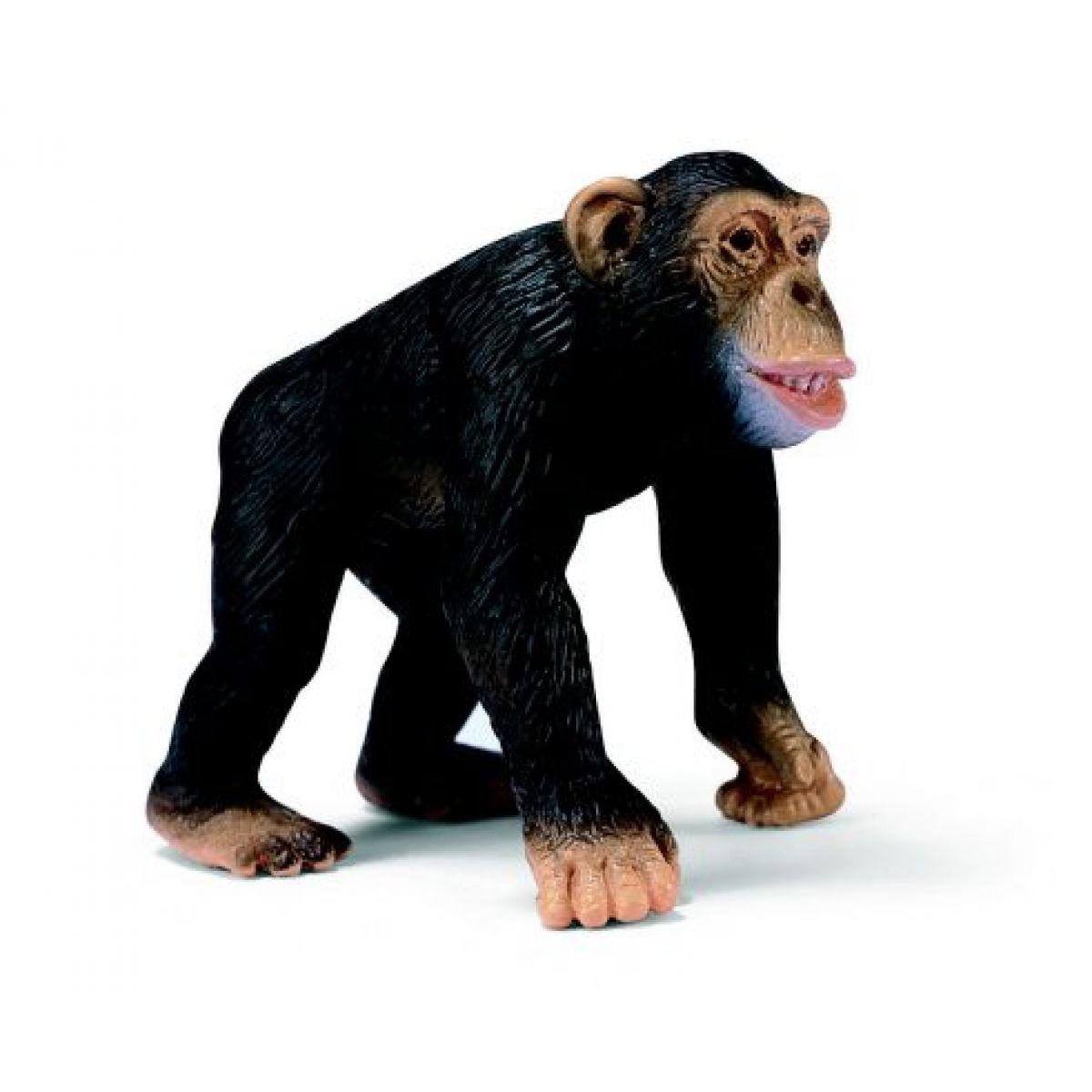 Opice Šimpanz Schleich 14189
