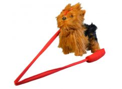 Pes Yorkshir vesele štěká a chodí