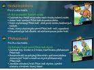 Phlat Ball JR. - Žluto-zelená 4