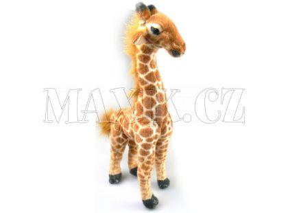 Plyšová Žirafa 40cm