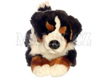 Plyšový pes Bernský Salašnický 35cm