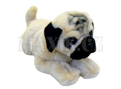 Plyšový pes Mopsík 40cm