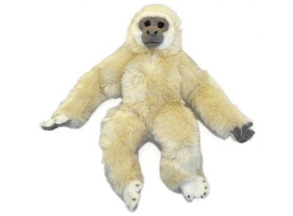 Plyšová opice Gibbon 45cm