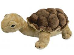 Plyšová želva 27cm