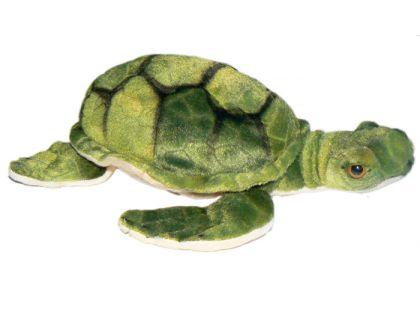 Plyšová želva 35cm