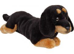 Plyšový jezevčík 30 cm - Černá