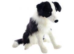 Plyšový pes border kolie velká 50 cm