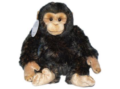 Plyšový šimpanz 32cm