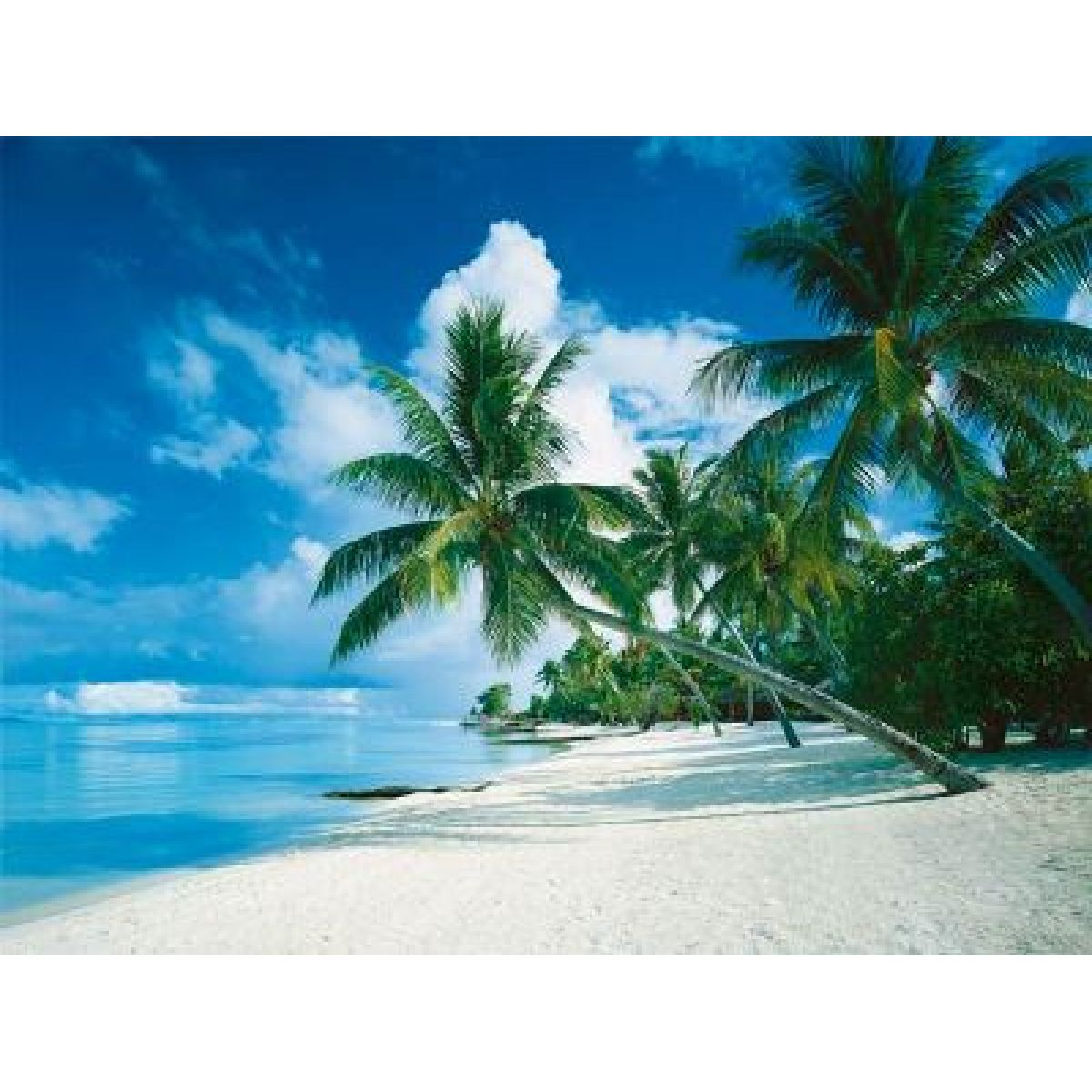 Puzzle Bora Bora 1000