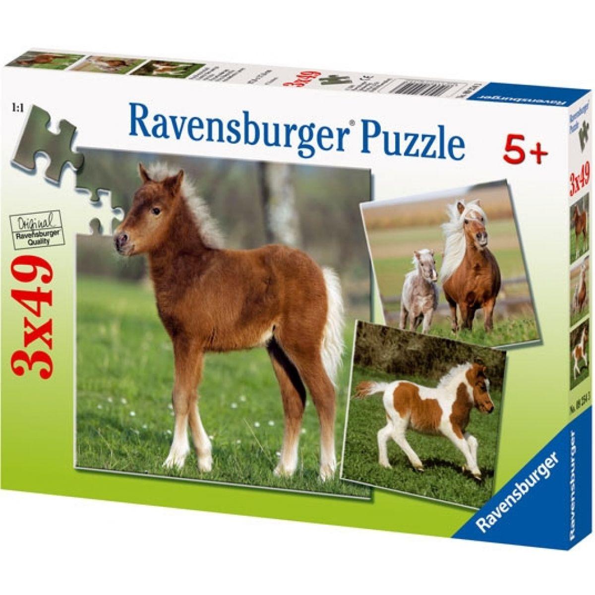 Puzzle Hříbata 3x 49d