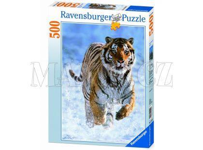 Puzzle Tygr na sněhu 500