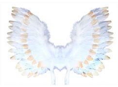 Rappa Andělská křídla s peřím bílo-zlatá