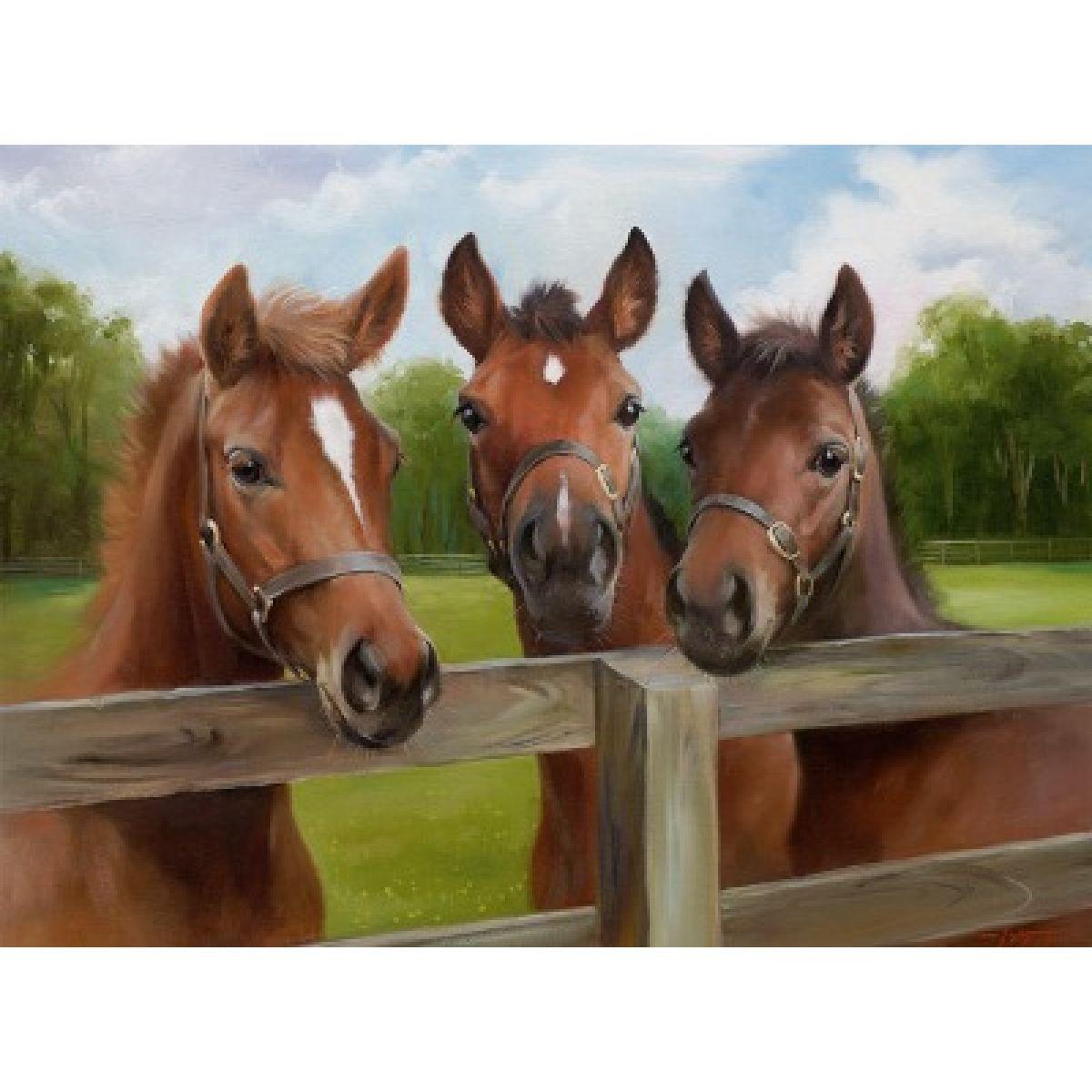 Ravensburger Koně 500 dílků