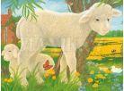 Ravensburger Kostky domácí zvířata - 12ks 3