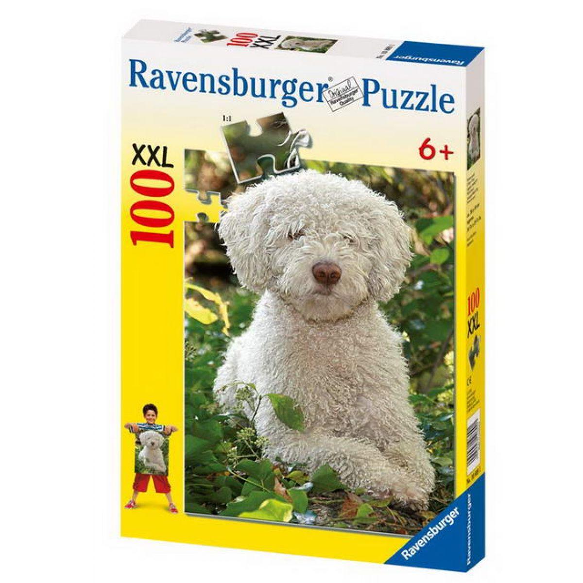 Ravensburger Španělský vodní psík 100 xxl dílků