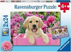 Ravensburger puzzle 050291 Kouzelná štěňata 2x24 dílků