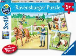 Ravensburger Puzzle 051298 Koně 3x49 dílků