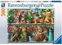 Ravensburger puzzle 148240 Kočky na knihovně 500 dílků