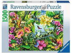 Ravensburger Puzzle 163632 Najdi žáby 1500 dílků