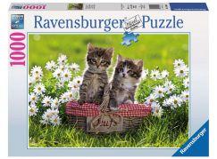 Ravensburger Puzzle 194803 Kočičí piknik 1000 dílků