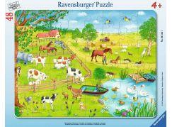 Ravensburger Puzzle 61457 Procházka na zemi 48 dílků