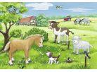 Ravensburger Puzzle Domácí zvířátka 2x12 dílků 3