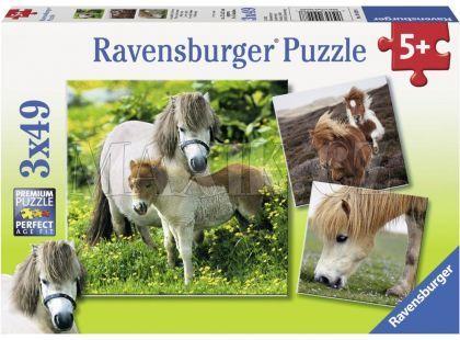 Ravensburger Puzzle Poníci 3 x 49 dílků