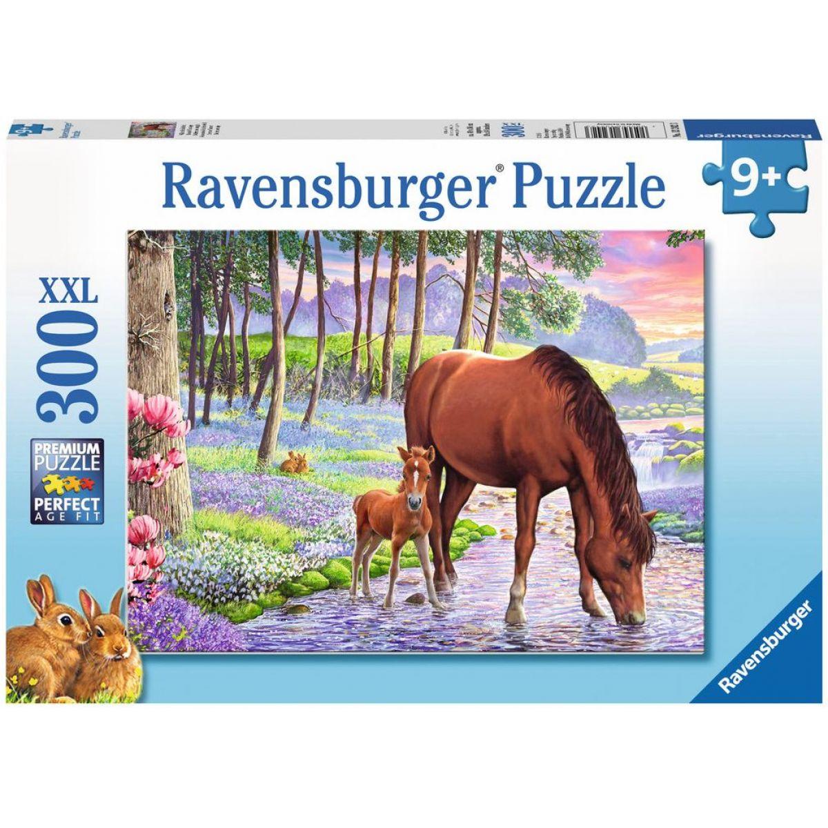 Ravensburger Puzzle Premium Klidný západ slunce 300XXL dílků