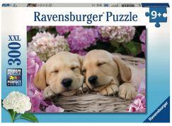 Ravensburger Puzzle Premium Sladcí psi v košíku 300XXL dílků