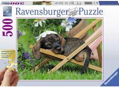 Ravensburger puzzle Roztomilý jezevčík 500 velkých dílků