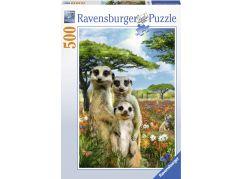 Ravensburger Puzzle Surikatí rodina 500 dílků