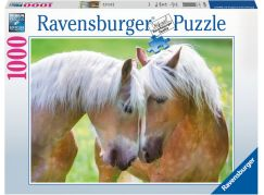 Ravensburger puzzle Úžasný moment 1000 dílků