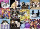 Ravensburger Puzzle XXL Kočičí koláž 300 dílků 2