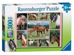 Ravensburger Puzzle XXL Nádherné koně 300 dílků
