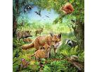 Ravensburger Puzzle Země živočichů 3x 49 dílků 2