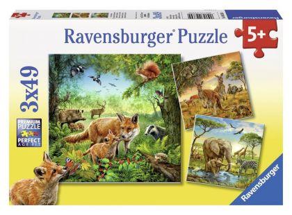 Ravensburger Puzzle Země živočichů 3x 49 dílků
