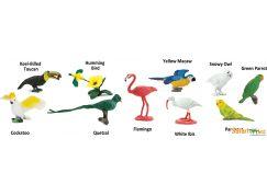 Safari Ltd Tuba - Exotické ptactvo