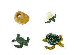 Safari Ltd Životní cyklus - Mořská želva