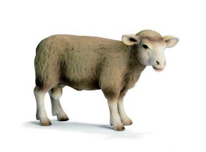 Schleich 13266 Ovce skopec