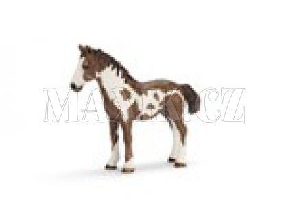 Schleich 13695 Kůň Grošák jednoroček