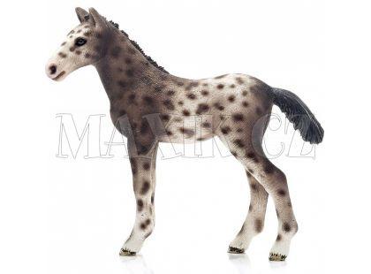 Schleich 13760 Knabstrupský kůň hříbě